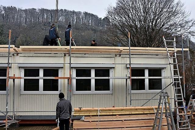 Pultdach für die Container