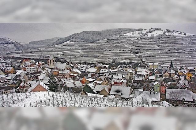 Winter im Kaiserstuhl