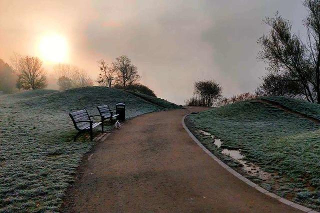 Ein stimmungsvoller Morgen am Freiburger Seepark