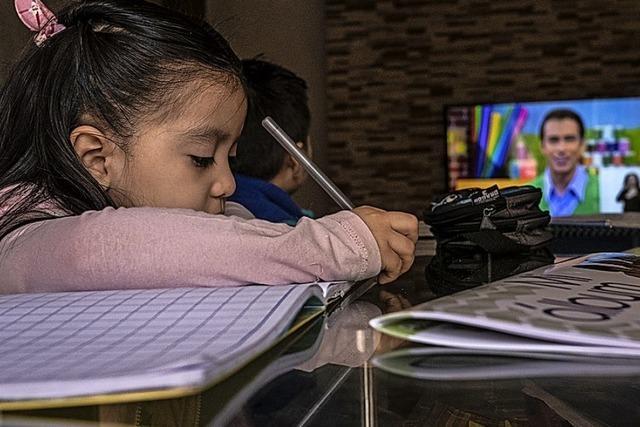 Homeschooling mit den Öffentlich-Rechtlichen