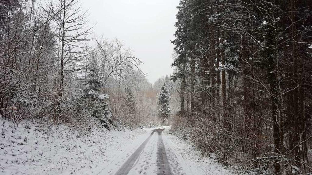 Spaziergang im Schnee, statt Hetze durch den Supermarkt    Foto: Stefan Mertlik