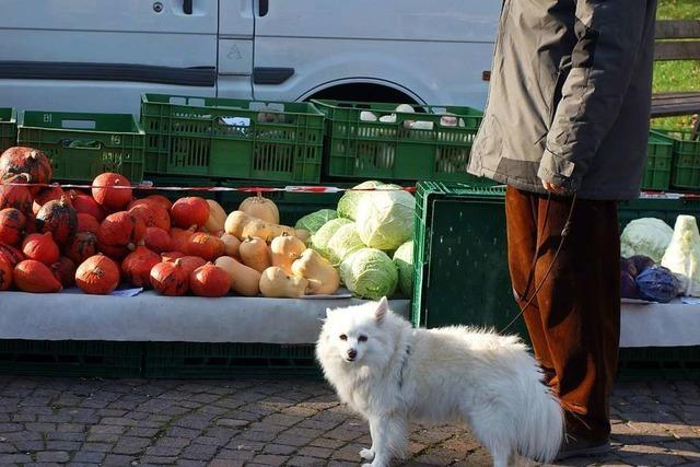 Seit 2014 sind Hunde auf dem Wochenmarkt verboten – lange hat es niemanden gestört