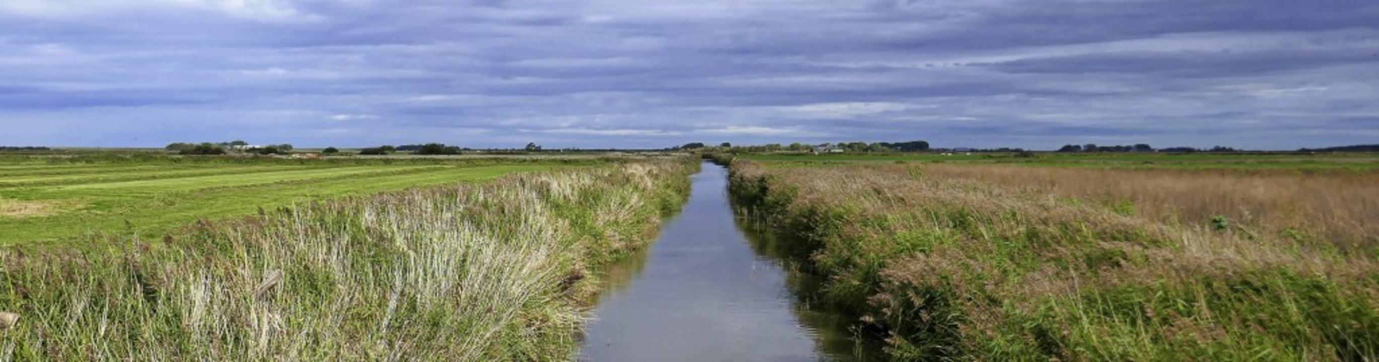 Weites Land: Entwässerungskanäle durch...roßen Auswanderungswelle nach Amerika.  | Foto: Dörte Nohrden (dpa)