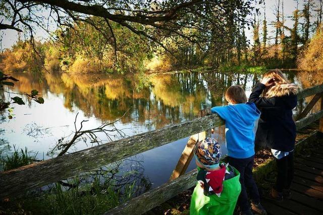 Eine Familientour am Rhein auf dem Elzpfad