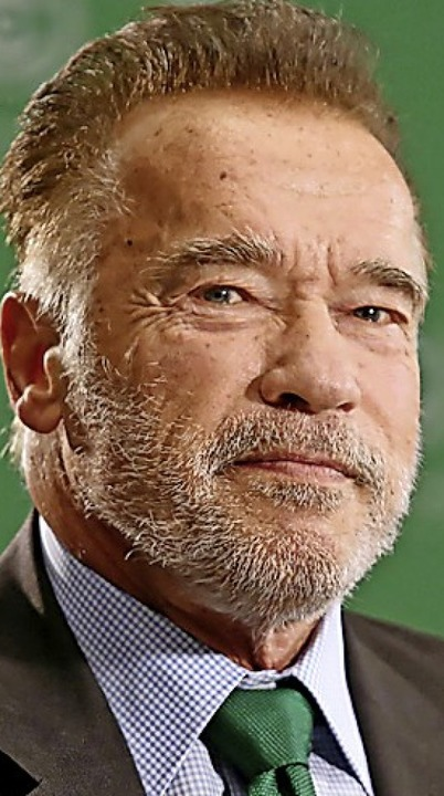 Schwarzenegger    Foto: Andrzej Grygiel (dpa)