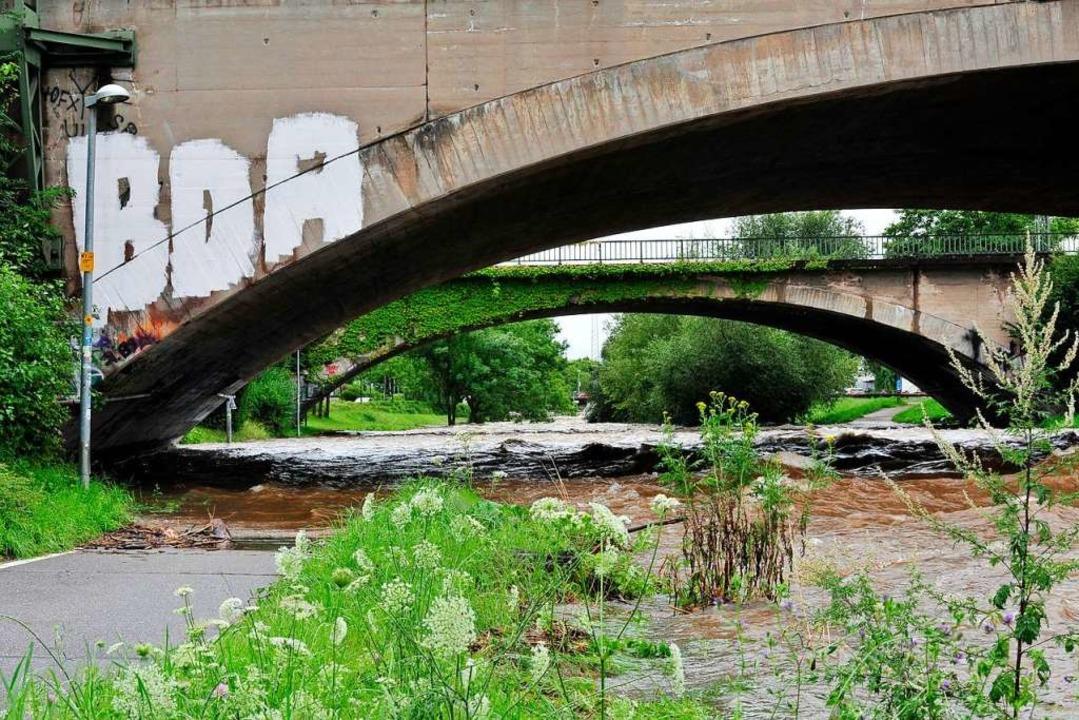 Ort des Geschehens: die Schnewlinbrücke (Archivbild)  | Foto: Thomas Kunz