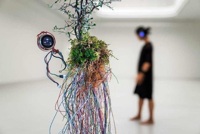 Aus dem Kunstverein Freiburg streamt das Shibui-Kollektiv eine Performance