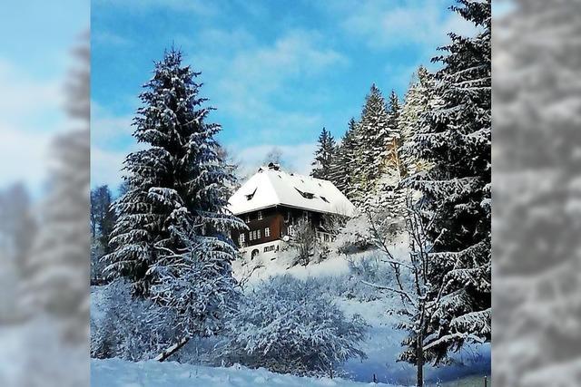 Winterliche Impressionen zum Jahresbeginn