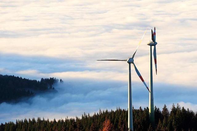 Am Taubenkopf bei Freiburg sollen zwei Windräder entstehen
