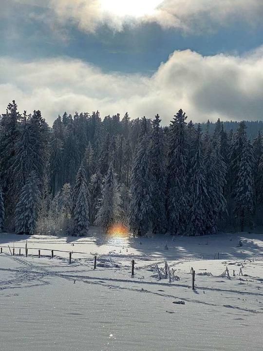 Natürlicher Scheinwerfer bei Hofsgrund  | Foto: Gela Grams
