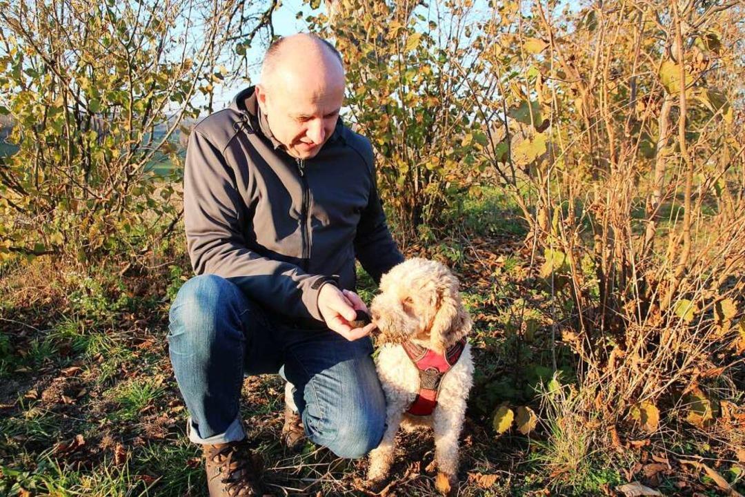 Hans-Georg Pfüller lässt Trüffelhund Emma an einem Burgundertrüffel schnuppern.  | Foto: Michael Saurer