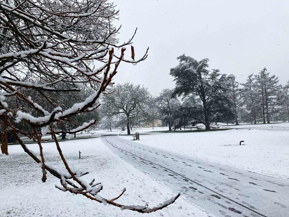Ungewohnter Anblick: Schneedecke im Herbert-King-Park  | Foto: Dora Schöls