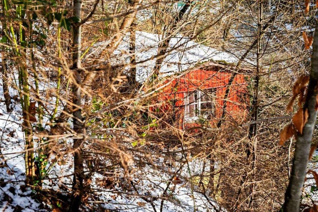 In dieser Hütte hatte sich Yves R. ill...age vor  Polizisten verstecken konnte.  | Foto: Philipp von Ditfurth (dpa)