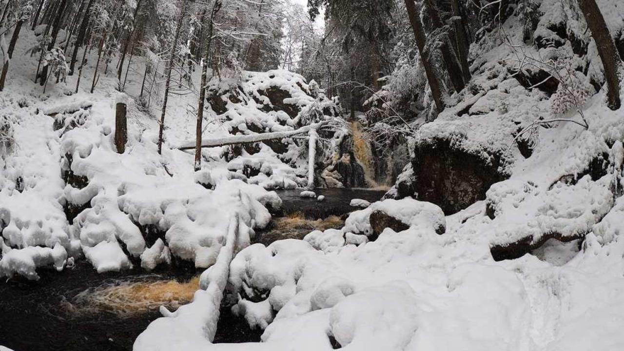 Schnee im Hochschwarzwald  | Foto: Susanne Gilg