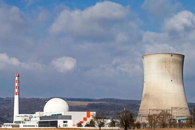 BUND stellt Strafanzeige wegen Brennelement-Lieferung ins Atomkraftwerk Leibstadt