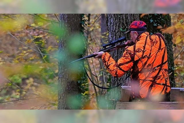 Ein Dorf wehrt sich gegen Hobby-Jäger