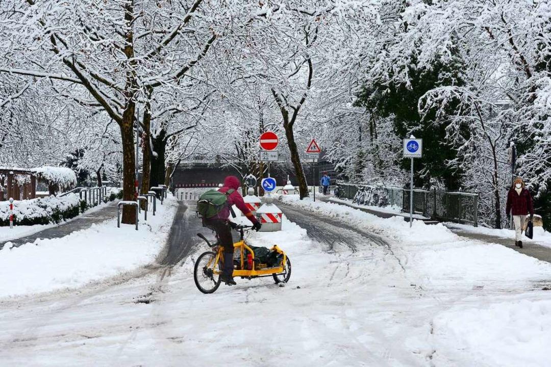 Radfahrer in der Wentzingerstraße  | Foto: Ingo Schneider