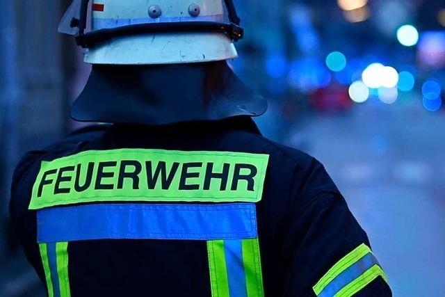 Die Feuerwehr Lörrach rettet einen Hund aus einem Dachsbau