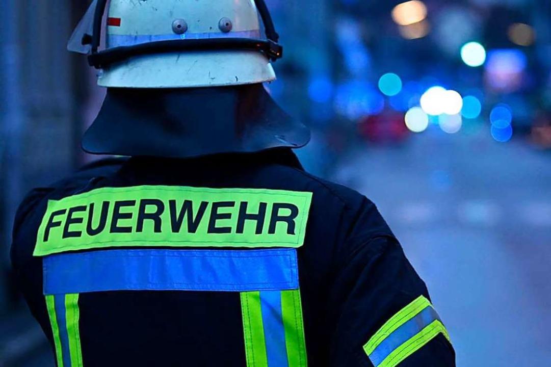 Die Lörracher Feuerwehr musste in eine...ion einen Hund ausgraben (Symbolfoto).  | Foto: Jonas Hirt