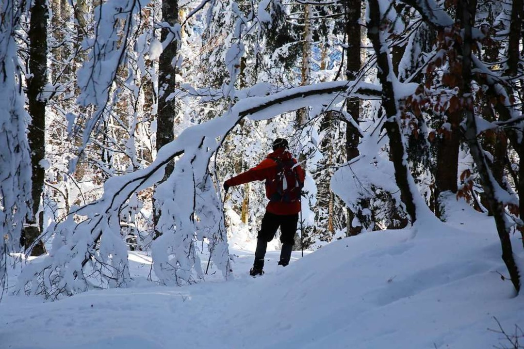 Die Polizei und das Landratsamt warnen...rart verschneiten  Wäldern zu bewegen.  | Foto: Ute Maier