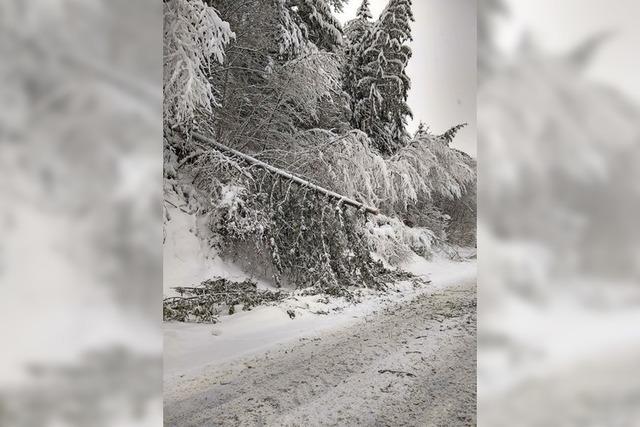 Schneemassen sorgen für viele Verkehrsbehinderungen