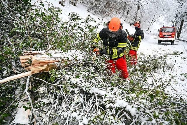 Schneefall führt zu Stromausfällen in zahlreichen Ortenau-Gemeinden