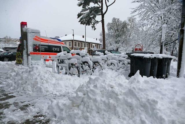 Schnee bringt am Hochrhein viele Bäume zu Fall