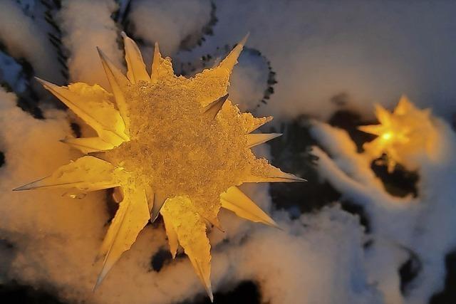 Ein Foto von Herrnhuter Sternen im Schnee wirkt magisch