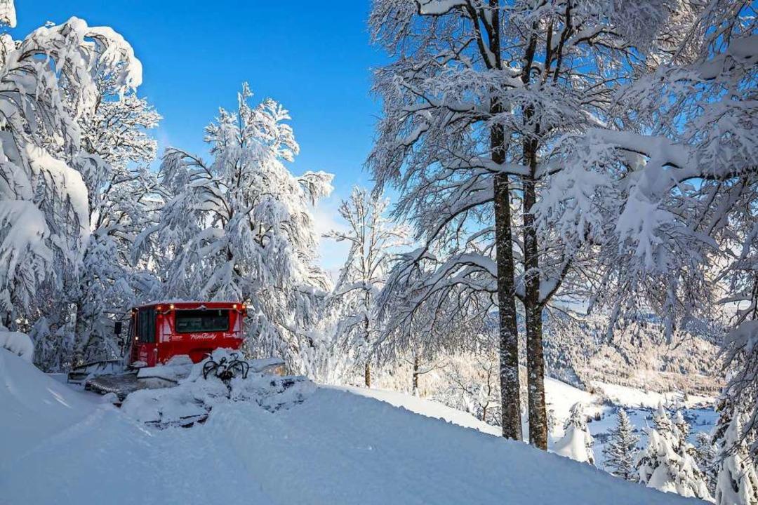 Das Pistenbullytaxi hält an einem Auss...unkt mitten im tief verschneiten Wald.    Foto: Philipp von Ditfurth (dpa)