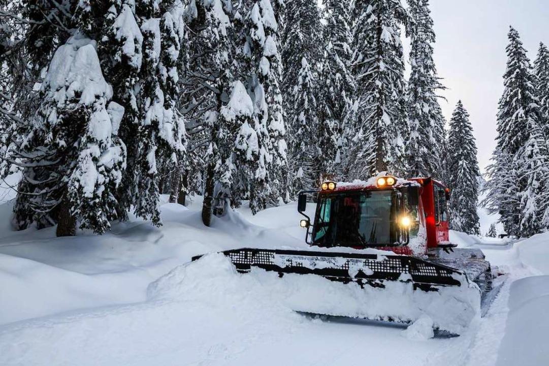 Das Pistenbullytaxi fährt nahe den Lif...sien durch den tief verschneiten Wald.    Foto: Philipp von Ditfurth (dpa)