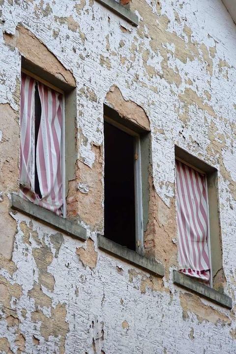 Fledermäuse haben die verwaiste Fabrik für sich entdeckt.  | Foto: sattelberger