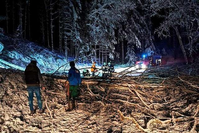 Stromausfälle durch Schneefall in Schuttertal