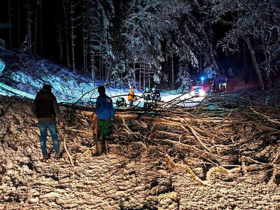 Auf dem Geisberg sind Bäume unter der Schneelast umgefallen.  | Foto: Roland Fischer