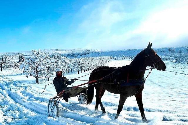 Schnee-Impressionen aus dem Landkreis Emmendingen