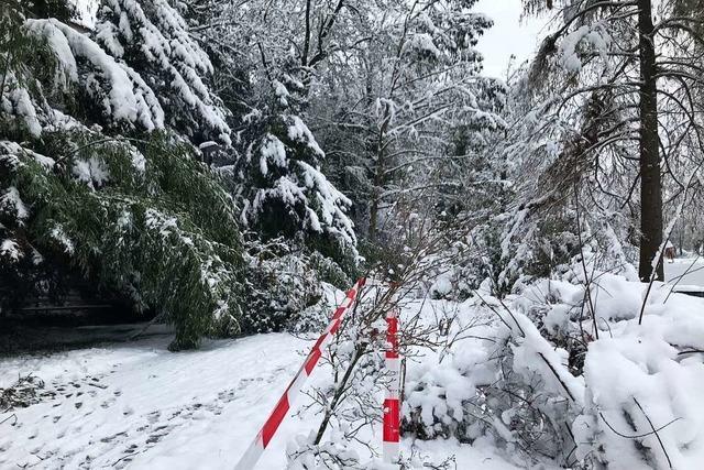 In Bad Bellingen haben Bauhofmitarbeiter mit den Folgen des starken Schneefalls zu tun