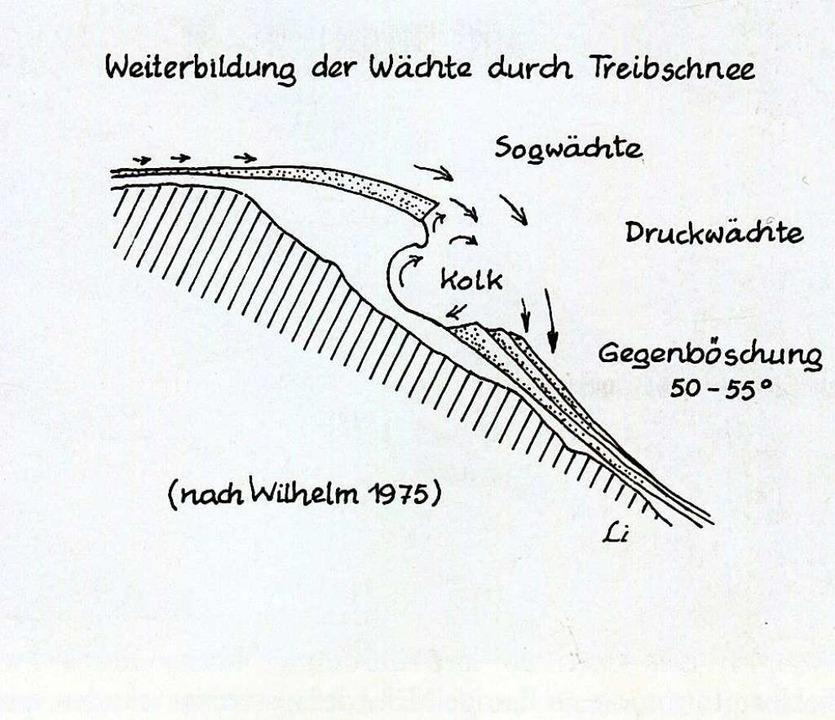 """Am Beispiel des Zastler Lochs lässt si...balpine Insel im Mittelgebirge"""".    Foto: """"Der Feldberg – subalpine Insel im Mittelgebirge"""""""
