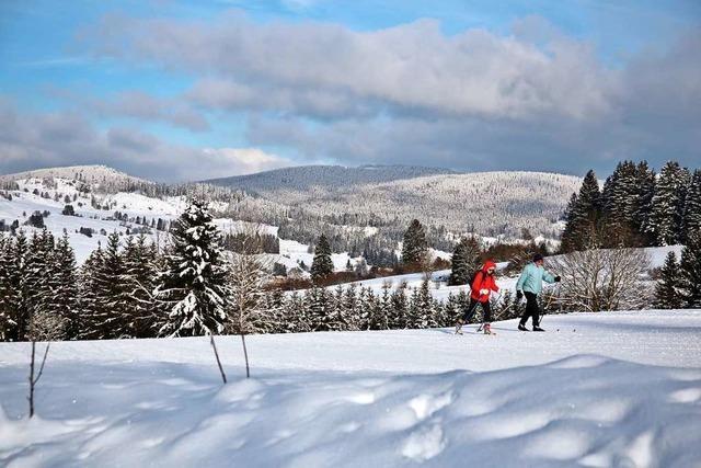 Corona-Pandemie verleiht dem Skilanglauf einen neuen Schub