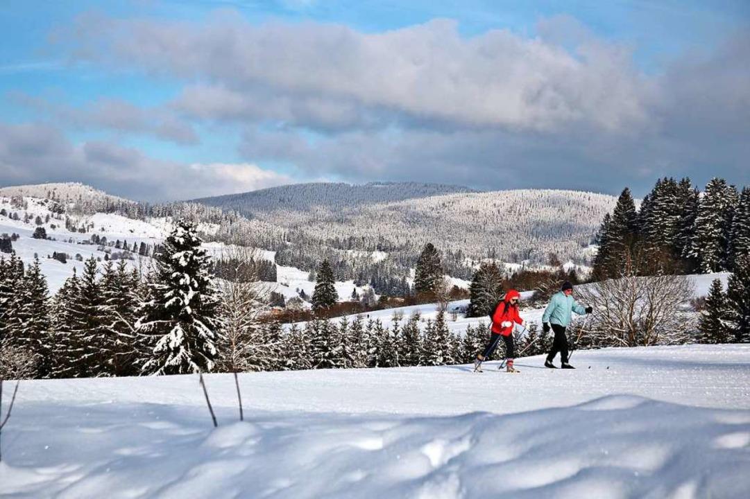 Skilanglauf ist der Trendsport des Corona-Winters.  | Foto: Ute Maier