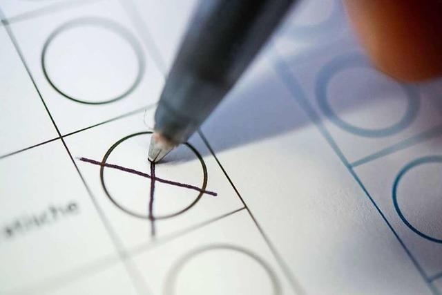 13 Parteien streben in der Ortenau in den Landtag
