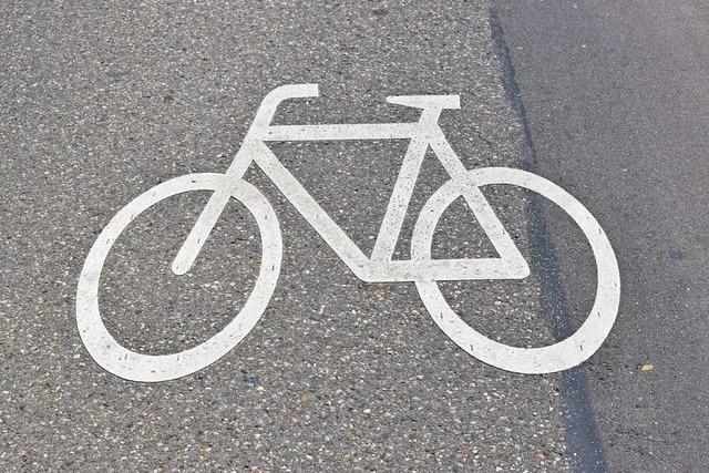 Radfahrer sollen schneller durchs Rheinvorland kommen