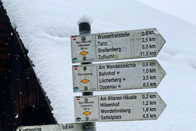 Die Jungen entdecken den Schwarzwald – der Tourismus braucht dafür eine Strategie