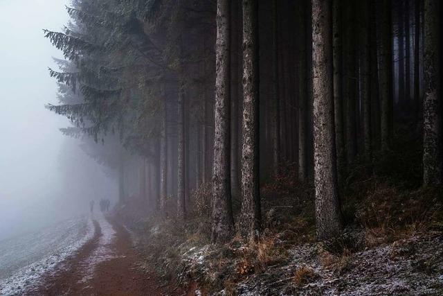 Wo Emmendingen wie Twin Peaks ist