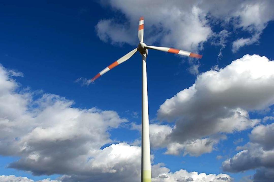 Am Taubenkopf sollen Windräder gebaut werden.  | Foto: Arne Dedert