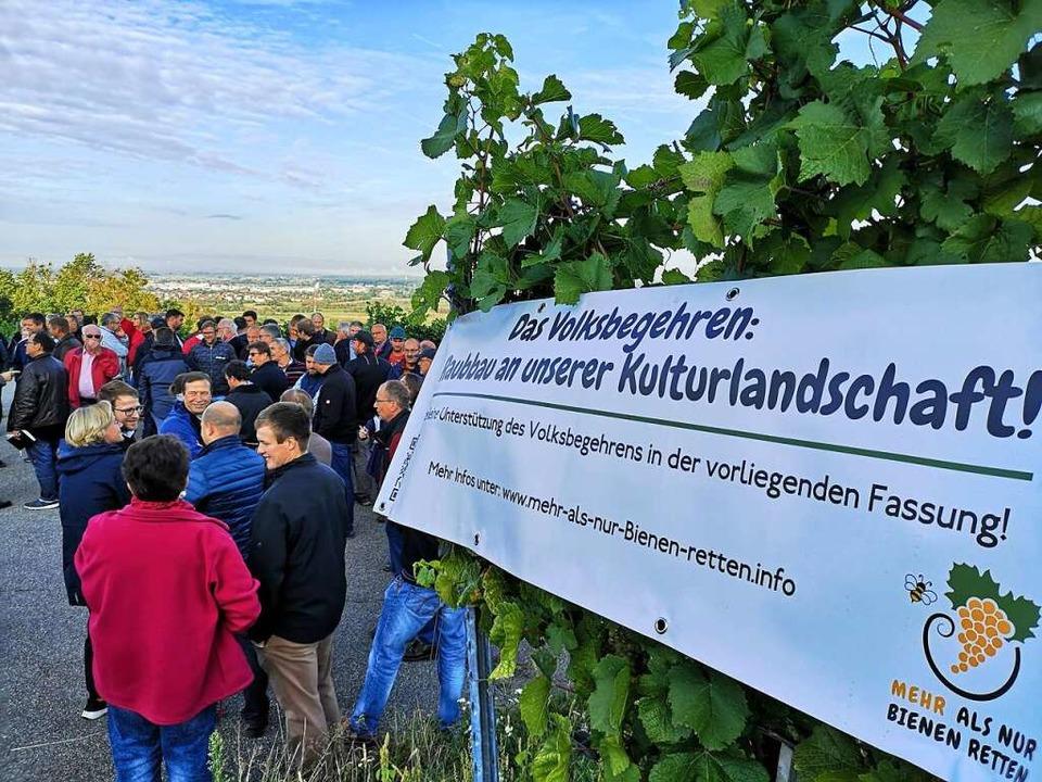 Auf der Erfolgsseite verbuchte Peter H...September 2019 beim Schloss Ortenberg.  | Foto: Ralf Burgmaier