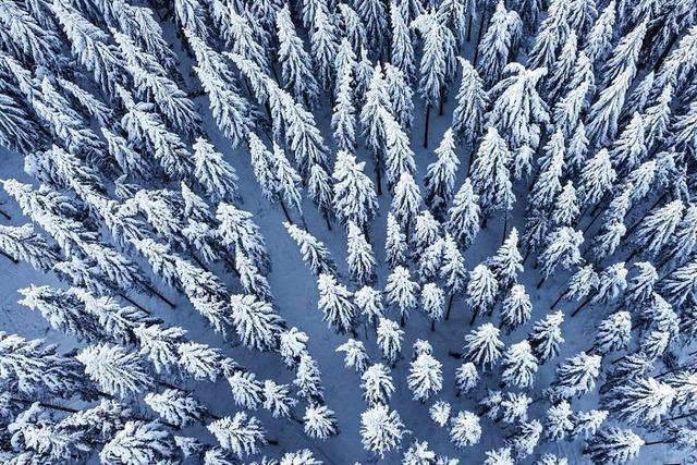 Drohnenvideo: So märchenhaft sieht das verschneite Südbaden aus