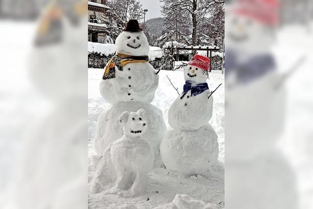Vergängliche Schneekreaturen