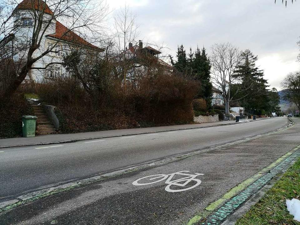 Sie fordern, dass die Zeller Straße aufgewertet wird und den Status erhält.  | Foto: Ralf Burgmaier