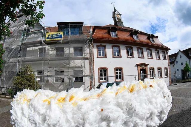 Haushaltsberatungen: Teningens Bürgermeister hält seine Rede online