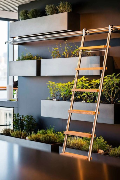 Im Besprechungsraum wächst ein kleiner vertikaler Garten.  | Foto: Horl 1993