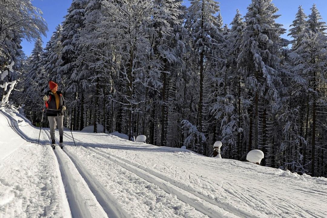 17,1 Kilometer können Wintersportler auf der Schauinsland-Loipe zurücklegen.  | Foto: Anita Fertl